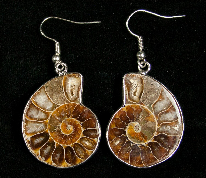 c0164cb6c Ammonite Earrings For Sale (#4511) - FossilEra.com