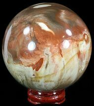 "Buy 3.2"" Colorful Petrified Wood Sphere - #49774"