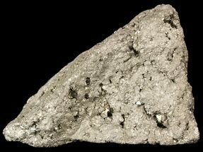 Pyrite - Fossils For Sale - #50118
