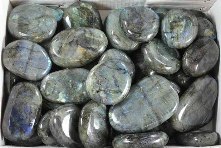"21 Lbs 2-4"" Polished Labradorite (Wholesale Lot) - 46 Pieces"
