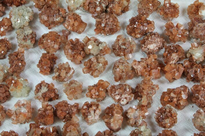 Natural Aragonite Clusters Wholesale Lot - 79 Pieces