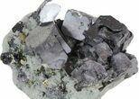 "2.3"" Galena, Chalcopyrite, Pyrite and Quartz Association - Bulgaria - #62249-1"