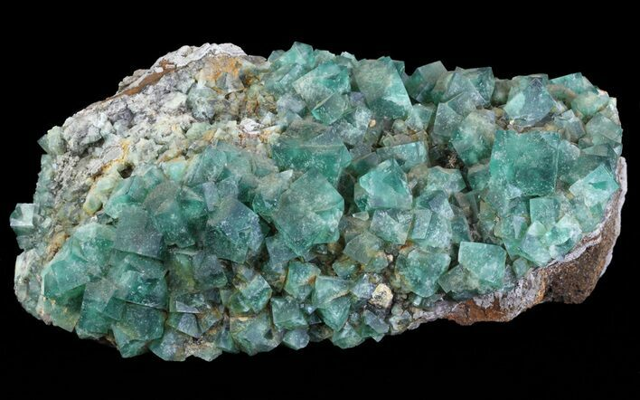 "8.8"" Fluorite & Galena Plate - Rogerley Mine (Special Price)"