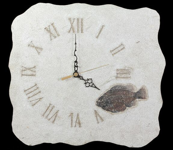 "15"" Tall Clock With Fossil Fish (Cockerellites) - Wyoming"