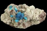 Vibrant Blue Cavansite Clusters on Stilbite - India - #64815-1