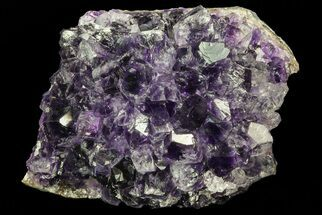 "Buy 2.5"" Purple Amethyst Cluster - Uruguay - #66715"