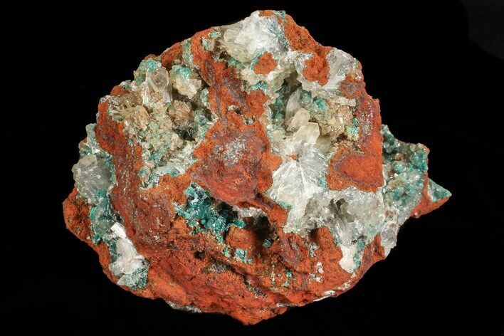 "3.6"" Fibrous Rosasite and Selenite Association - Mexico"