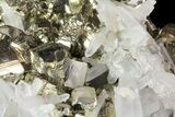 "2.6"" Gleaming Pyrite Crystal Cluster with Quartz - Peru - #72589-3"