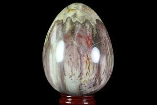 "5.4"" Colorful, Polished Petrified Wood ""Egg"" - Triassic For Sale, #74744"