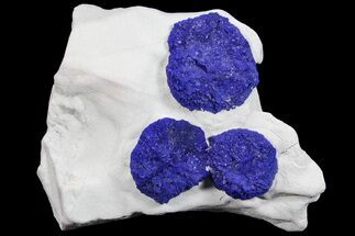 Buy Brilliant Blue Azurite Sun Cluster On Rock - Australia - #77296