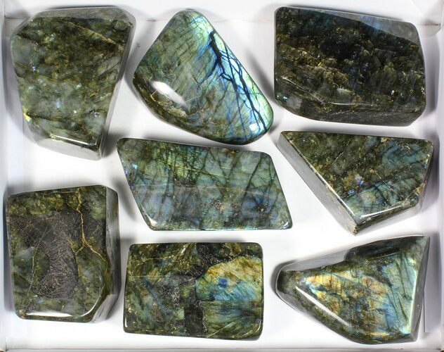 Wholesale Lot: 20 Lbs Free-Standing Polished Labradorite - 8 Pieces