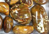 Wholesale Lot: 23 Lbs Polished Carnelian Agate - 17 Pieces - #77766-1