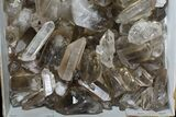 "Lot: 18 Lbs Smoky Quartz Crystals (2-4"") - Brazil - #77823-2"
