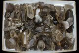 "Wholesale Lot: 22 Lbs Smoky Quartz Crystals (2-4"") - Brazil - #77830-1"