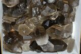 "Wholesale Lot: 22 Lbs Smoky Quartz Crystals (2-4"") - Brazil - #77830-2"