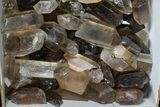 "Wholesale Lot: 22.5 Lbs Smoky Quartz Crystals (2-4"") - Brazil - #77841-4"