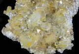 "4.1"" Plate Of Gemmy, Chisel Tipped Barite Crystals - Mexico - #78139-2"