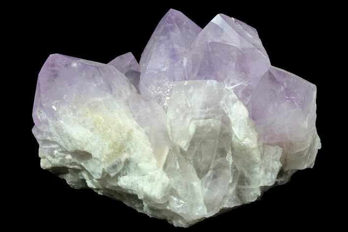 "6.2"" Wide Amethyst Crystal Cluster - Large Points"