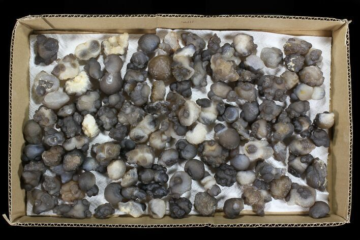 "Wholesale Lot: 2-3"" Chalcedony Nodules - 108 Pieces"