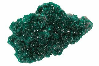 "1.25"" Sparkly, Dioptase Crystal Cluster - Namibia For Sale, #78698"