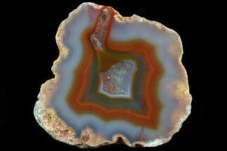 Quartz var. Agate - Fossils For Sale - #79515