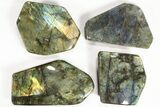Wholesale Lot: 25 Lbs Free-Standing Polished Labradorite - 12 Pieces - #78028-3
