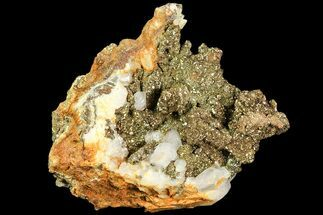 Pyrite & Calcite - Fossils For Sale - #80358