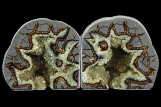 "Buy 5"" Crystal Filled Septarian Bookends - Utah - #80524"