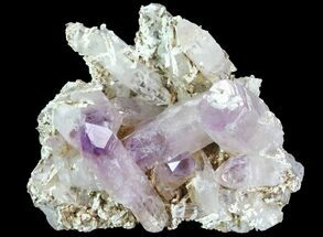 Quartz var. Amethyst - Fossils For Sale - #80547