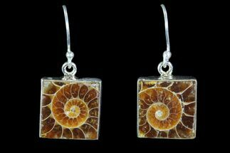Buy Fossil Ammonite Earrings - Sterling Silver - #81622