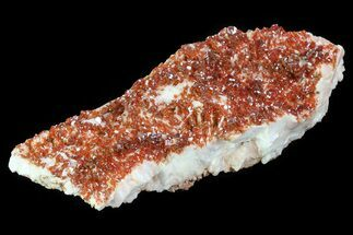 "Buy 4.8"" Ruby Red Vanadinite Crystals on Pink Barite - Morocco - #82384"