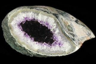 "Buy 5.8"" Purple Amethyst Geode - Uruguay - #83659"