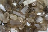"Wholesale Lot: 22 Lbs Smoky Quartz Crystals (2-4"") - Brazil - #84233-1"