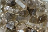 "Wholesale Lot: 22 Lbs Smoky Quartz Crystals (2-4"") - Brazil - #84233-2"