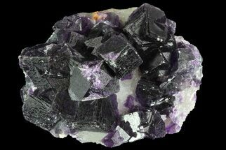 "Buy 2.35"" Purple Fluorite On Quartz - Jingbian Mine, China - #84769"