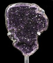Quartz var. Amethyst - Fossils For Sale - #50979