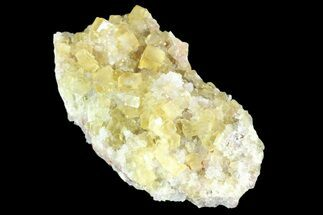 "2.9"" Lustrous Yellow Cubic Fluorite/Quartz Crystal Cluster - Morocco  For Sale, #84299"