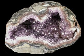"Buy Unique, 7.3"" Purple Amethyst Geode - Uruguay - #87496"