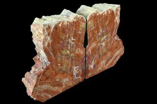 "Buy 6.8"" Tall, Arizona Petrified Wood Bookends - Red, Purple & Yellow - #89341"
