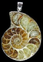 Fossil Ammonite Pendant - 110 Million Years Old For Sale, #89837