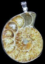 Fossil Ammonite Pendant - 110 Million Years Old For Sale, #89843