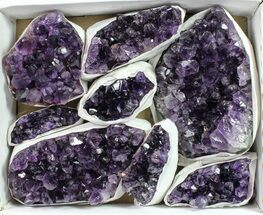 Quartz var. Amethyst - Fossils For Sale - #90129