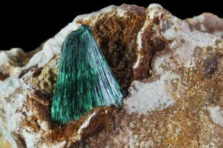 Malachite - Fossils For Sale - #90342