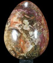 "12"" Giant Polished Petrified Wood ""Egg"" - 48 Lbs For Sale, #90431"