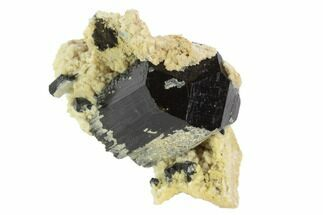"1.7"" Black Tourmaline (Schorl) & Feldspar Cluster - Namibia For Sale, #90686"