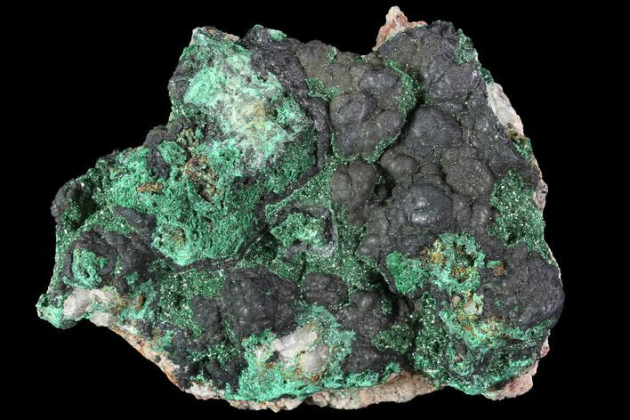 "3.3"" Malachite Crystals with Goethite - Morocco"