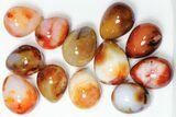 "Wholesale Box: 2-3"" Polished Carnelian Eggs - 24 Pieces - #91436-1"