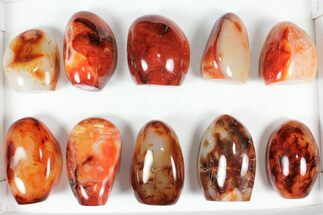 "Wholesale Lot: 3-4"" Cut Base Polished Carnelian - 10 pieces For Sale, #91505"