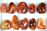 "Wholesale Lot: 3-4"" Cut Base Polished Carnelian - 10 pieces - #91530-1"