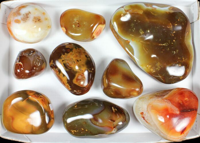 Wholesale Lot: 15lbs Colorful, Polished Carnelian Agate - 9 Pieces